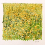 Outer-Harbor-Fields-Gouache-on-Paper-5.5-x-6-2015